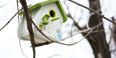 Мастер-класс «Скворечники для птиц» от столярной мастерской «СМ-47»