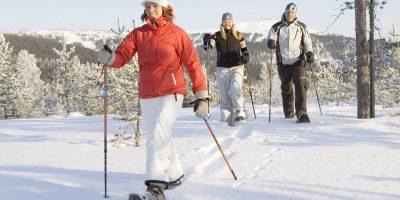 Отдых на новогодних каникулах в «Константиновой усадьбе» на Селигере со скидкой до 60%