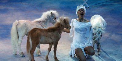 Новогоднее цирковое шоу «Снежная королева»