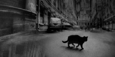 Ночная экскурсия «Охота за привидениями на черном лимузине» со скидкой до 38%