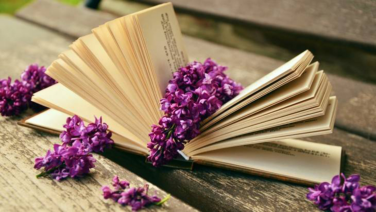 Встреча «Книгу — в добрые руки»