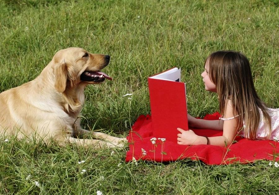 Встреча «Встреча с собакой-терапевтом «Читаем вместе»»