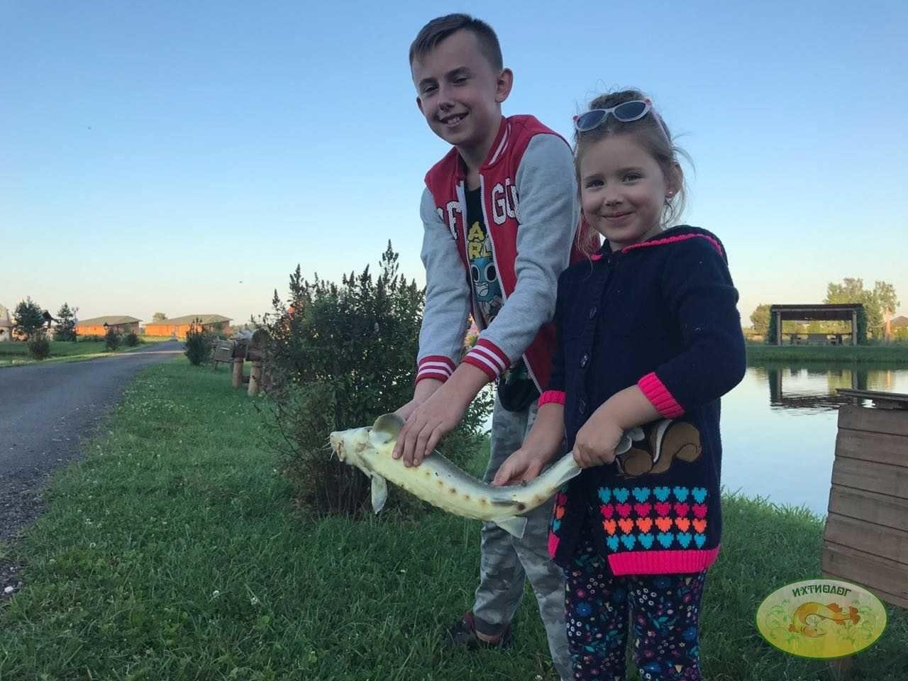 Счастливые выходные на лучшей базе отдыха в Подмосковье – Ихтиолог