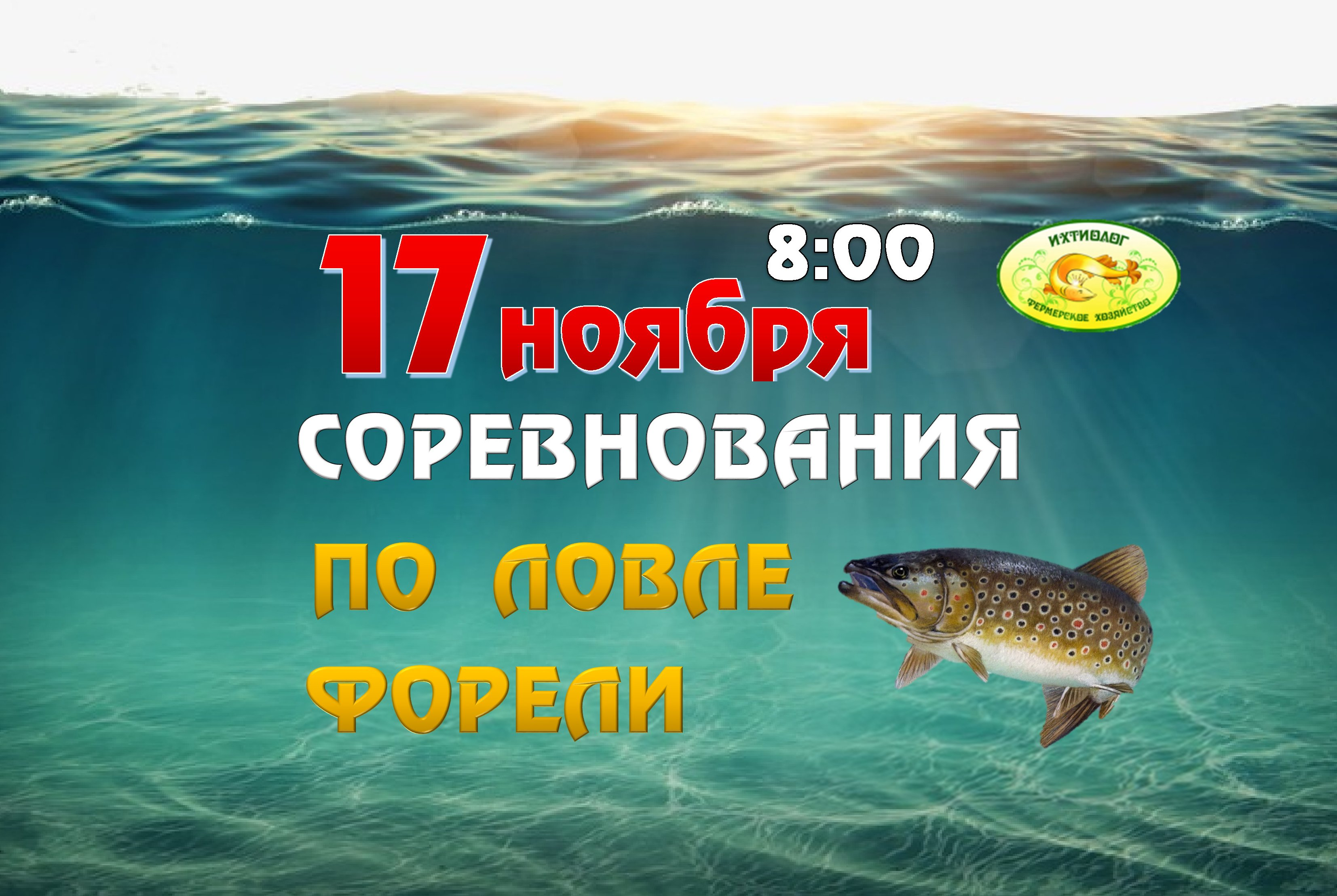 Соревнования по рыбной ловле форели в Подмосковье – Ихтиолог