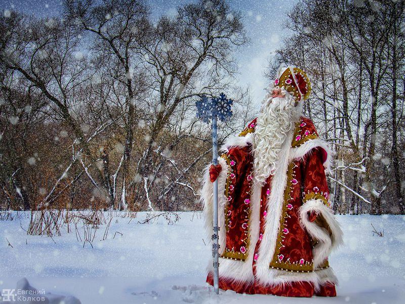 Картинки деде мороз в лесу
