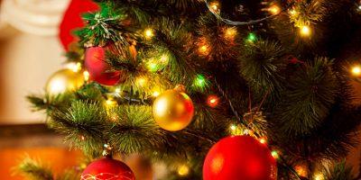 Новогодние искусственные ели «Триумф», «Императрица» или «Снежная королева» от интернет-магазина City-Shoping со скидкой до 87%