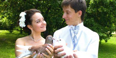 Мастер-класс «Как организовать шикарную свадьбу, непотратив миллион»