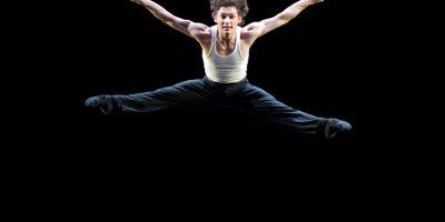 Творческий вечер Ивана Васильева и солистов балета театров Москвы и Санкт-Петербурга