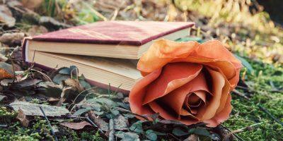 Лекция «Любимые женщины великих писателей»