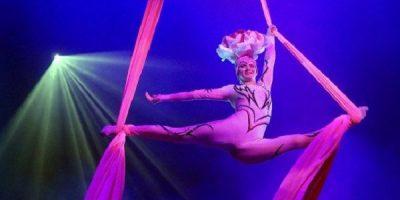 Цирковое шоу «Царевна-Несмеяна»