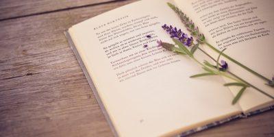 Мероприятие, посвященное Всемирному Дню Поэзии
